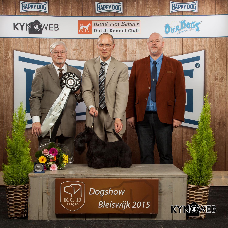 Лучшая собака выставки (BIS) - Победители Международной выставки собак в Блейсвике (Нидерланды), суббота, 7 ноября 2015 (BIS фото)