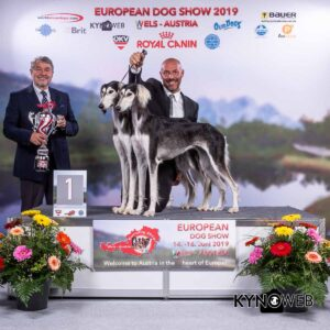 Results Euro Dog Show Wels - Friday 14 June 2019 - Kynoweb
