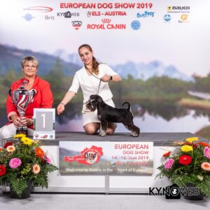 Results Euro Dog Show Wels - Sunday 16 June 2019 - Kynoweb